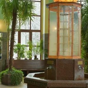 pomieszczenia z roślinnością